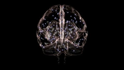 human brain - intelligence video stock e b–roll