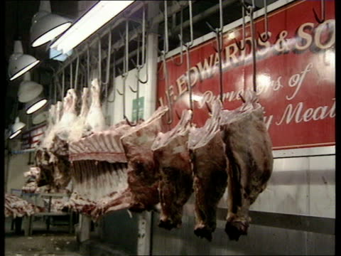 human bse/cjd link statements itn cms row of beef carcasses ms sides of beef hanging from hooks in meat market ms workers in white coats along past... - hanging stock videos & royalty-free footage