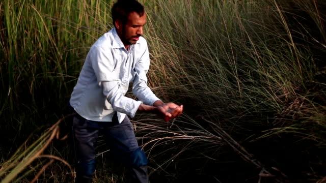 menschen sammeln von wasser aus dem teich - haryana stock-videos und b-roll-filmmaterial