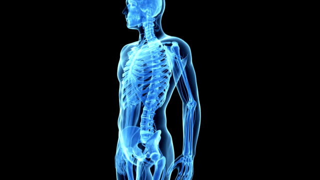 vídeos de stock, filmes e b-roll de human elbow pain - articulação humana termo anatômico