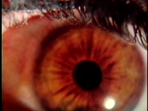 vídeos de stock e filmes b-roll de 1971 reenactment ecu human eye / 19th century united states / audio - olhos castanhos
