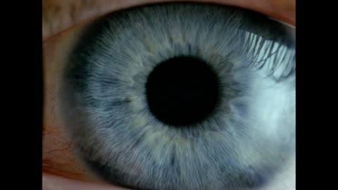human eye - bcu blue eye, dilated pupil contracts, eyelid closes - blinking stock videos & royalty-free footage