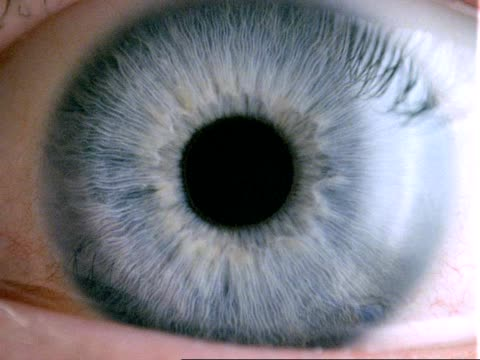 human eye - cu blue eye, dilated pupil contracts, eyelid closes - 虹彩点の映像素材/bロール