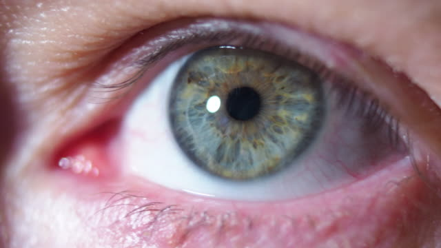 human eye close-up - green eyes stock videos and b-roll footage
