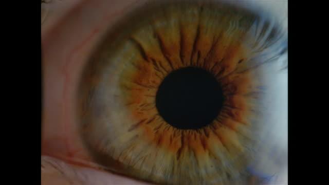 SLO MO, ECU, Human eye