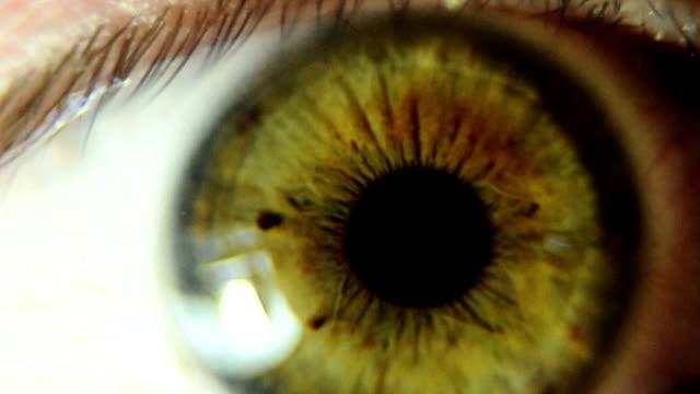 vídeos de stock, filmes e b-roll de olho humano - olho humano