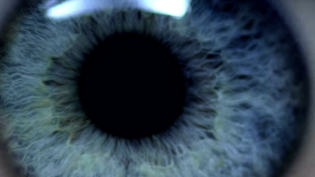 human eye - nature stock videos & royalty-free footage