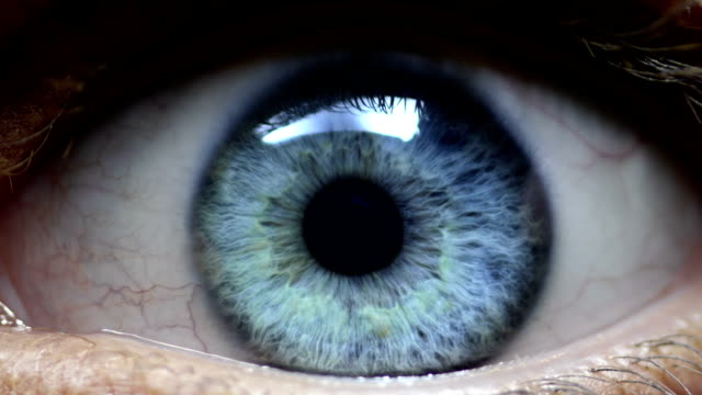 human eye - eyeball stock videos and b-roll footage