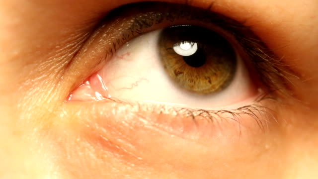 human eye - cornea stock videos & royalty-free footage