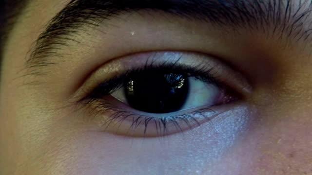 human eye - brown stock videos & royalty-free footage