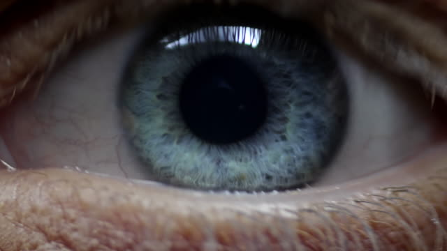 human eye - macro stock videos and b-roll footage