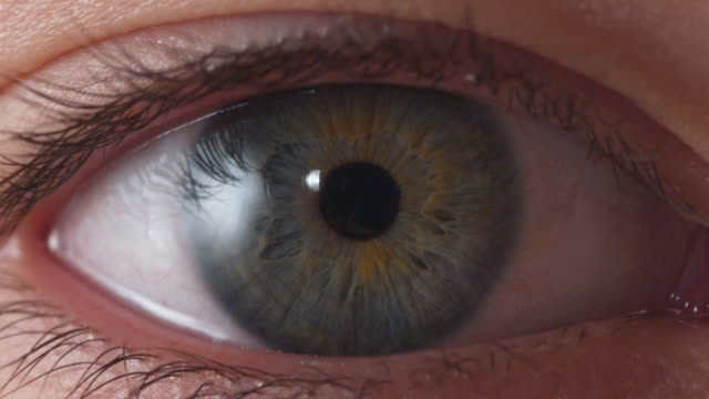 vidéos et rushes de ecu, human eye - perception sensorielle