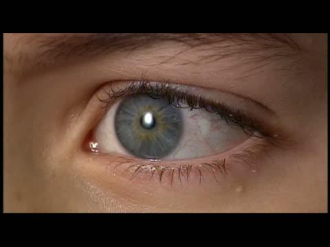 cu  ecu  shaky human eye - grey colour stock videos & royalty-free footage