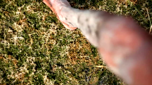 Menschliche Füße Wandern in nassem Boden