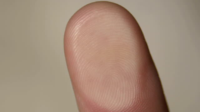 human fingerprint - fingerprint stock videos & royalty-free footage