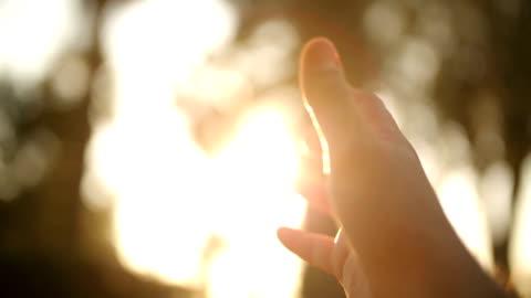 vídeos y material grabado en eventos de stock de mano humana y la luz solar - rayo de luz