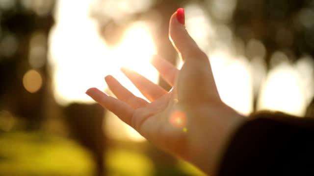 人間の手と太陽の光 - 手を伸ばす点の映像素材/bロール