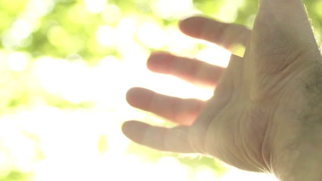 Mänsklig hand och solen ljus