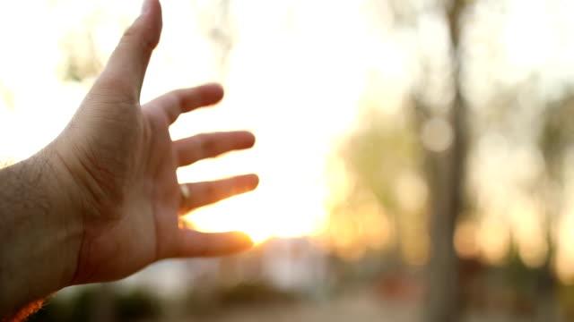 vídeos y material grabado en eventos de stock de mano humana y la luz solar - alcanzar