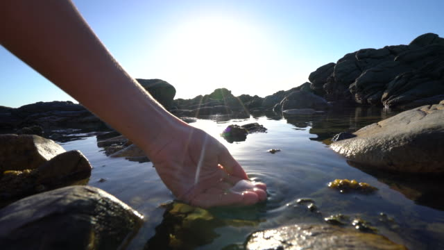 human hand cupped to catch fresh water from sea pond - spring flowing water video stock e b–roll