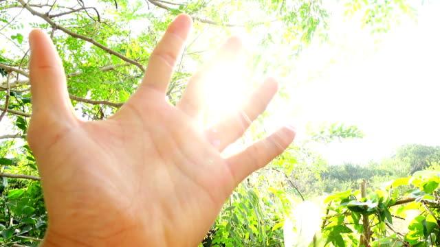 Human hand in sun light lens flare