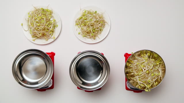 MS Human hand putting bean sprout from plate onto bowl in sequence / Seoul, South Korea