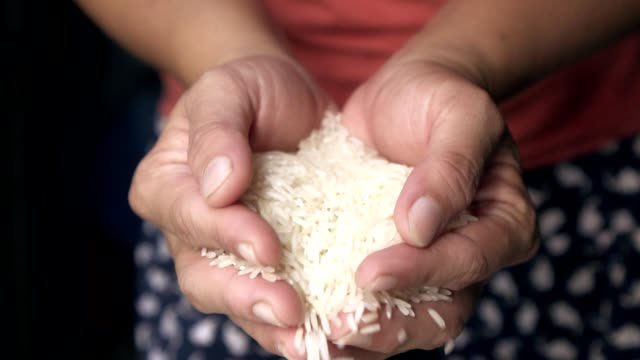 human hand slow motion rice seed drop