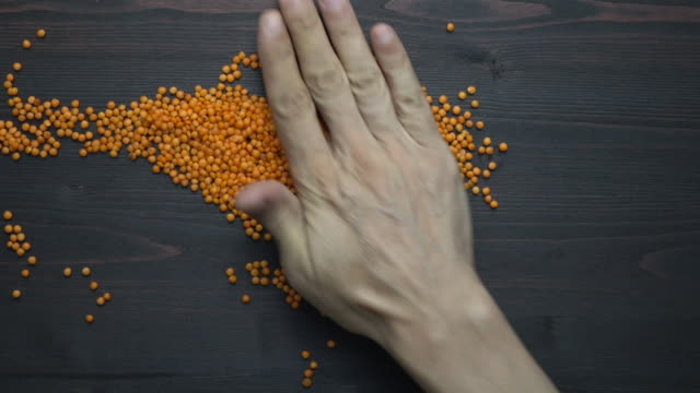 Human Hand Transforming Red Lentil Seeds Into World Map Shape