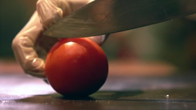 human hand with glove cutting vegetables on a chopboard with knife tomato chopping accuracy skill - ingredient stock videos & royalty-free footage