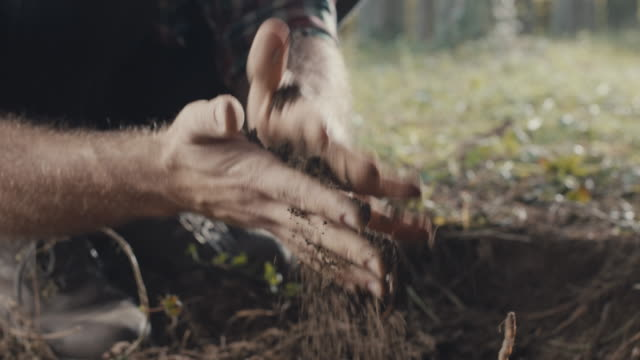 human hands playing with soil - micro organism stock videos & royalty-free footage