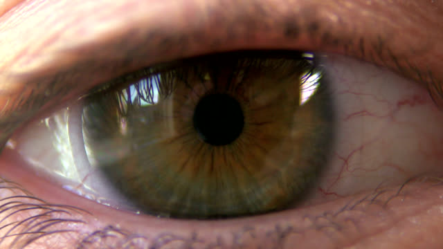 human hazel eye - eyeball stock videos and b-roll footage