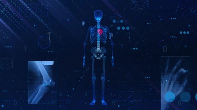 4k human heart medical scan (loopable) - cervical vertebrae stock videos & royalty-free footage