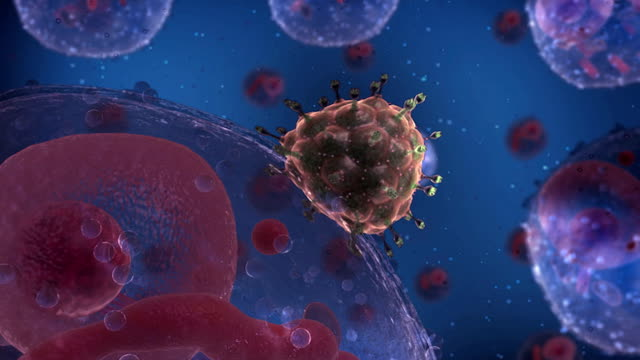 human immunodeficiency virus or hiv attaching and merging with a healthy t cell within the human system at a cellular level. - t cell stock videos & royalty-free footage