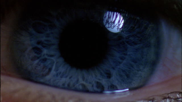 a human pupil dilates. - blue eyes stock videos and b-roll footage