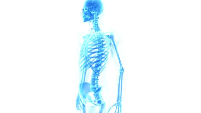 vídeos de stock, filmes e b-roll de human shoulder pain - articulação humana termo anatômico