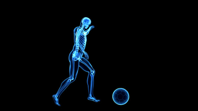 human skeleton kicking football - human bone stock videos & royalty-free footage