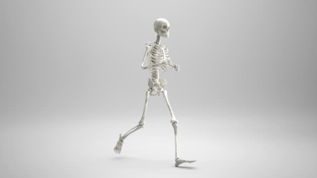 human skeleton running | loopable - human skeleton stock videos and b-roll footage