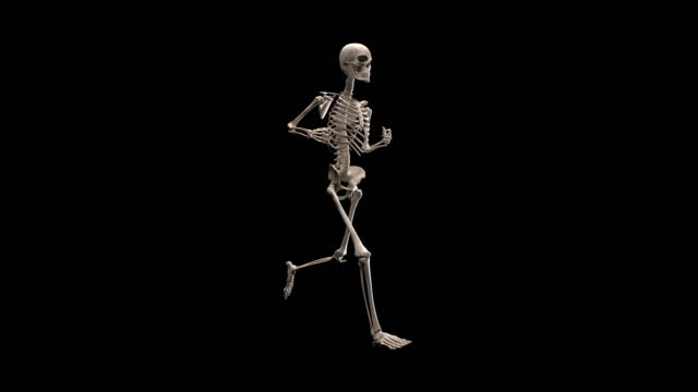 Human skeleton running with alpha channel | Loopable