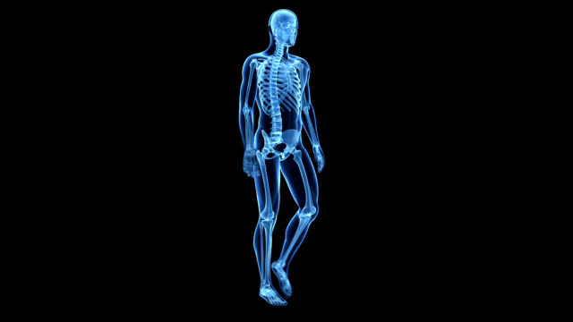 human skeleton, walking - human bone stock videos & royalty-free footage