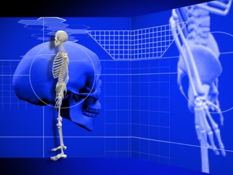 human skeleton with a spinning skull - 鼻腔点の映像素材/bロール