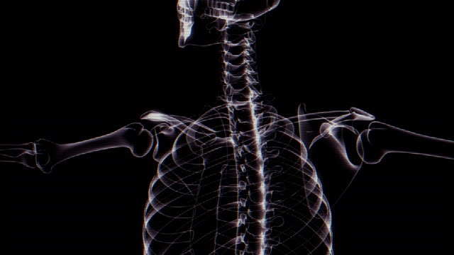 human skeleton x-ray animation - human spine stock videos & royalty-free footage