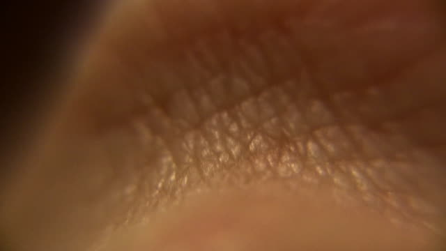 human skin macro (close-up wrinkles) - human skin stock videos and b-roll footage