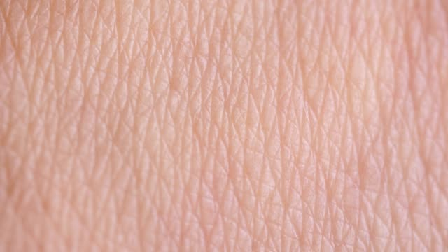 human skin - skin stock videos & royalty-free footage