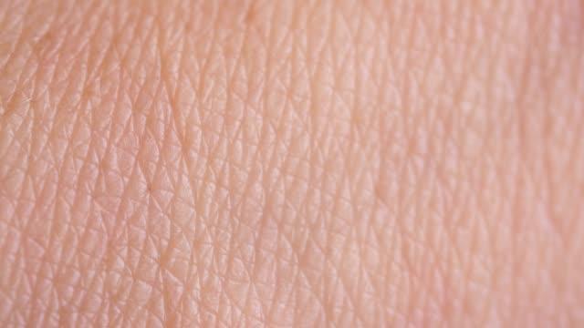 human skin - buccia video stock e b–roll