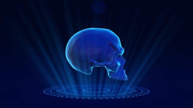 vídeos de stock, filmes e b-roll de fundo do crânio humano de 4k - lobo temporal