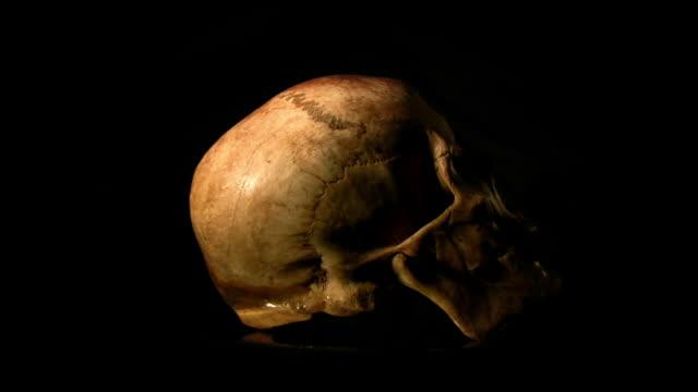 人の頭蓋骨、hd1080 、ntsc 、pal - 鼻腔点の映像素材/bロール