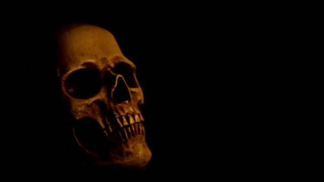 human skull on solid dark background in candlelight - candlelight stock videos & royalty-free footage
