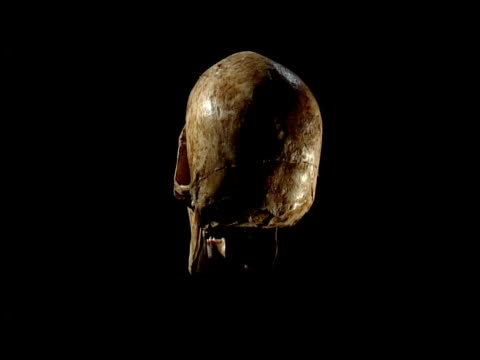 a human skull revolves. - skull stock videos and b-roll footage