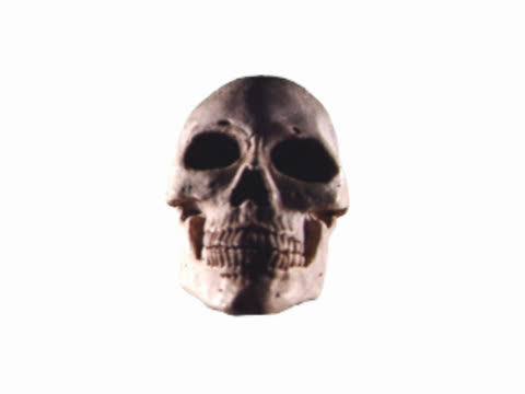 human skull turning back and forth - human back stock videos & royalty-free footage