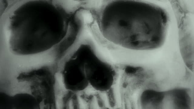human skull - ancient stock videos & royalty-free footage